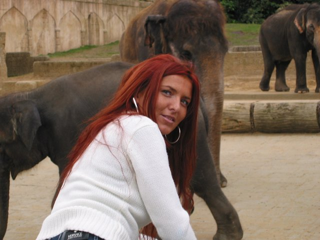 Zoo w Hannover