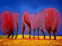Red Willows